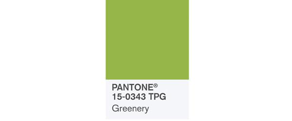 PANTONE2017年度代表色 – 草木绿