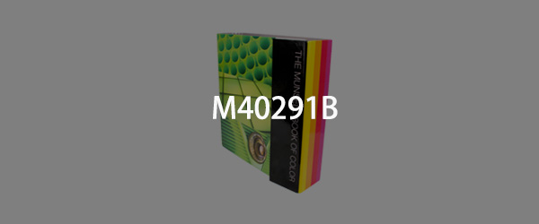孟赛尔色书-哑面M40291B(Munsell Book of Color, Matte Edition)