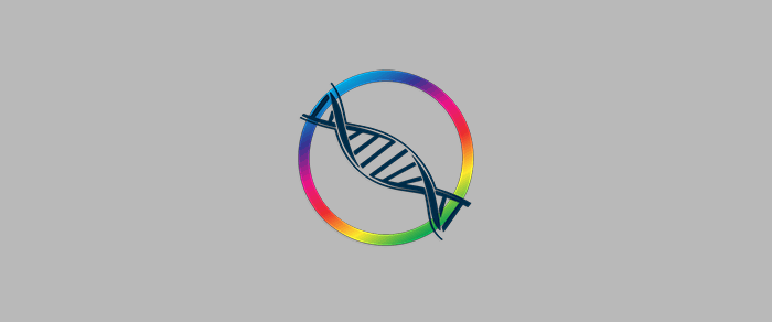 ColorLogic DLS设备链接文件优化工具下载