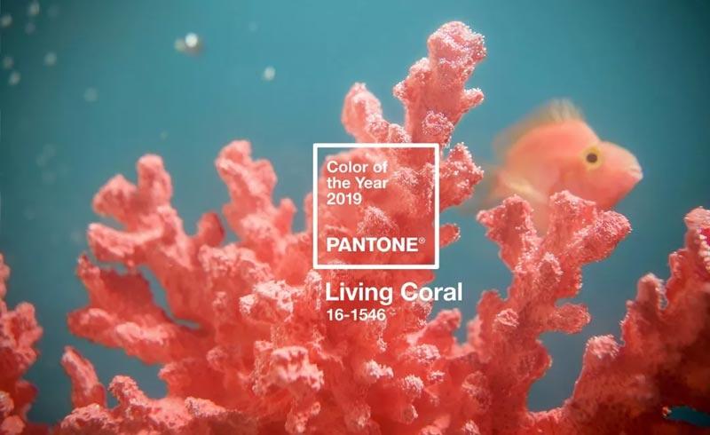 PANTONE潘通发布2019年代表色/流行色:PANTONE 16-1546 Living Coral活珊瑚橘